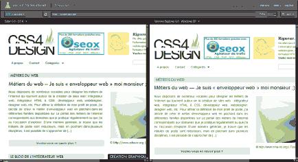 Affichage du site sous Safari Mac OSX et IE6 pour Windows. Cliquez pour agrandir l'image.