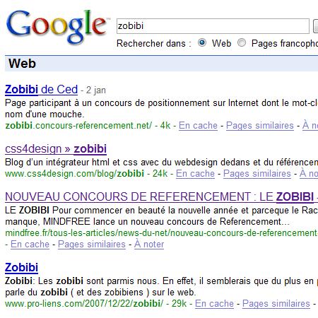 zobibi en 2eme place sur google
